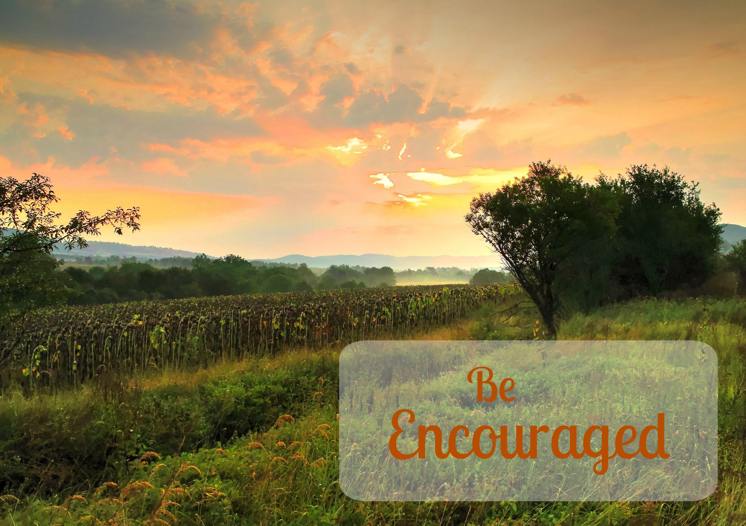 Do You Need to be Encouraged?